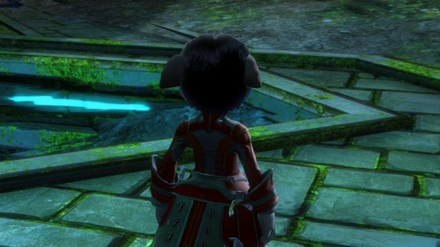 Want an easier time exploring? Roll an asura.